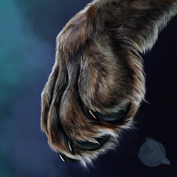 Adrian Wolf paw
